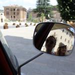 Umbria in Ape Rental Noleggio Vespe Noleggio Scooter Noleggio Ape Calessino (56)